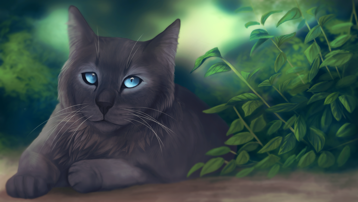 Warrior Cats E