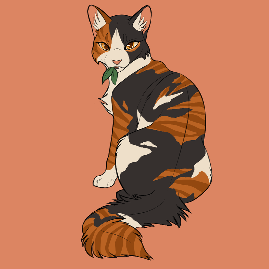 Human Warrior Cats Tumblr Squirrelfligt