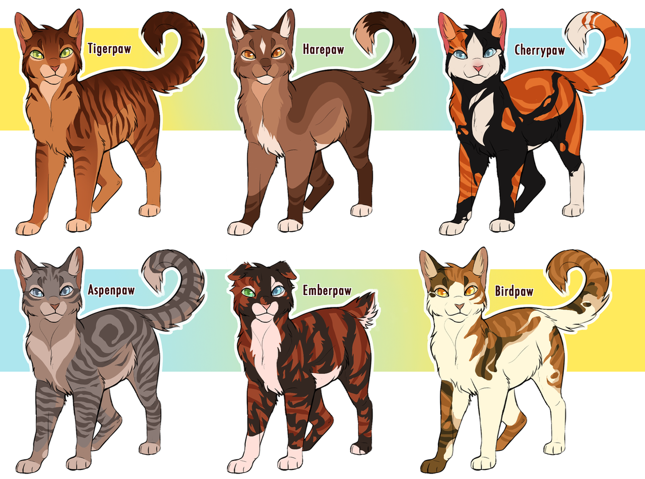 Kitten Warrior Cats