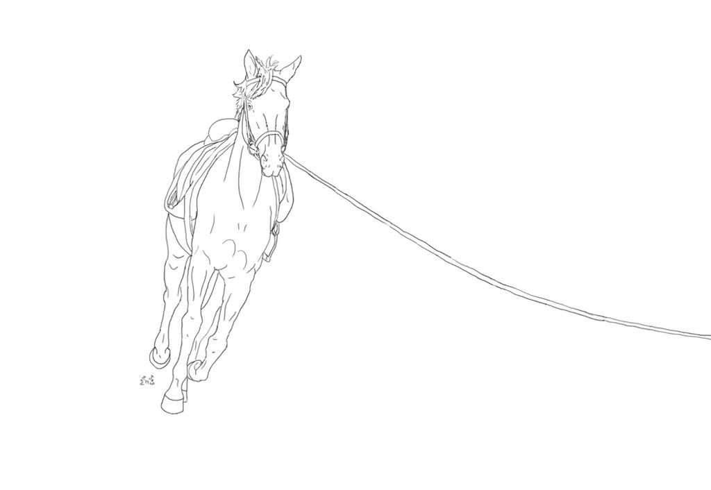 Myndaniðurstaða fyrir horse in round rein clipart