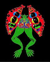 Leaperdoptera00a by meso-mhyrr