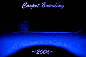 Carpet Boarding 2006 by boozker