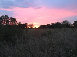 Sunset stock 2