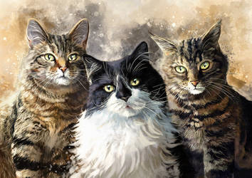 Tyra, Bobo and Gizmo by FleetingEmber
