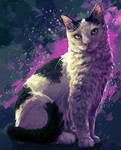 Mittens - Pet Commission