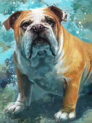 Bulldog by FleetingEmber