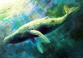 Blue Whale by FleetingEmber