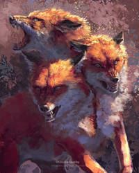 Fox Cerberus