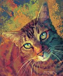 Set - Tabby Cat Commission
