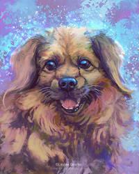 Dog Commission - Pongo