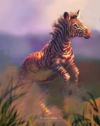 Vulnerable Animals Week Day 1 - Grevy's Zebra
