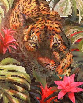 Day 6 - Jaguar
