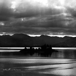 ..: silver nightfall :..