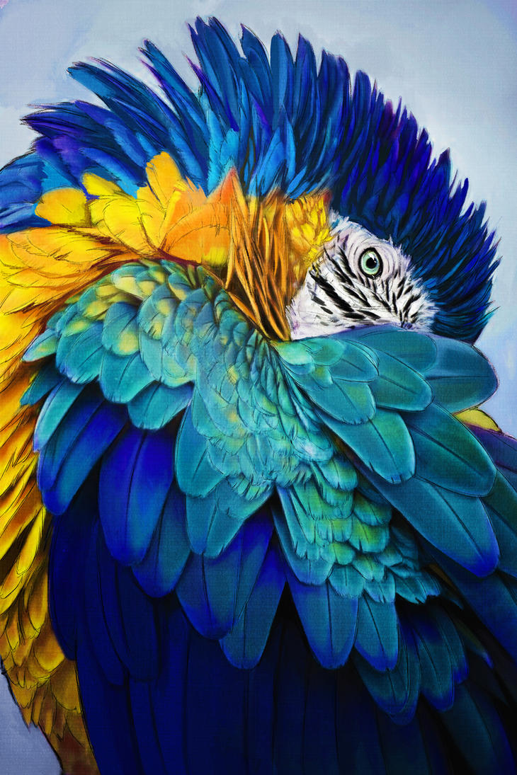 Blue and Gold by ApeironDiesirae