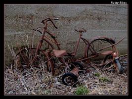 Rusty Bikes by boron