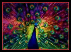 Nuclear Peacock by boron