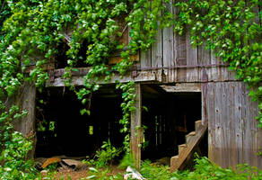 Hidden Barn by boron