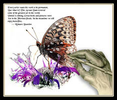 Butterflies and Art by boron