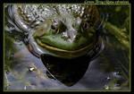 Green Frog Grimace