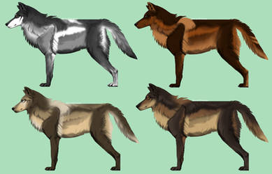 CLOSED Wolf Adopts