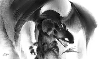 Toothless by evelmiina