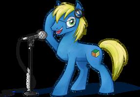 Pony-ID