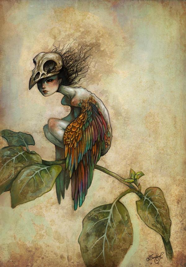 soul of a bird by aeryael on deviantart