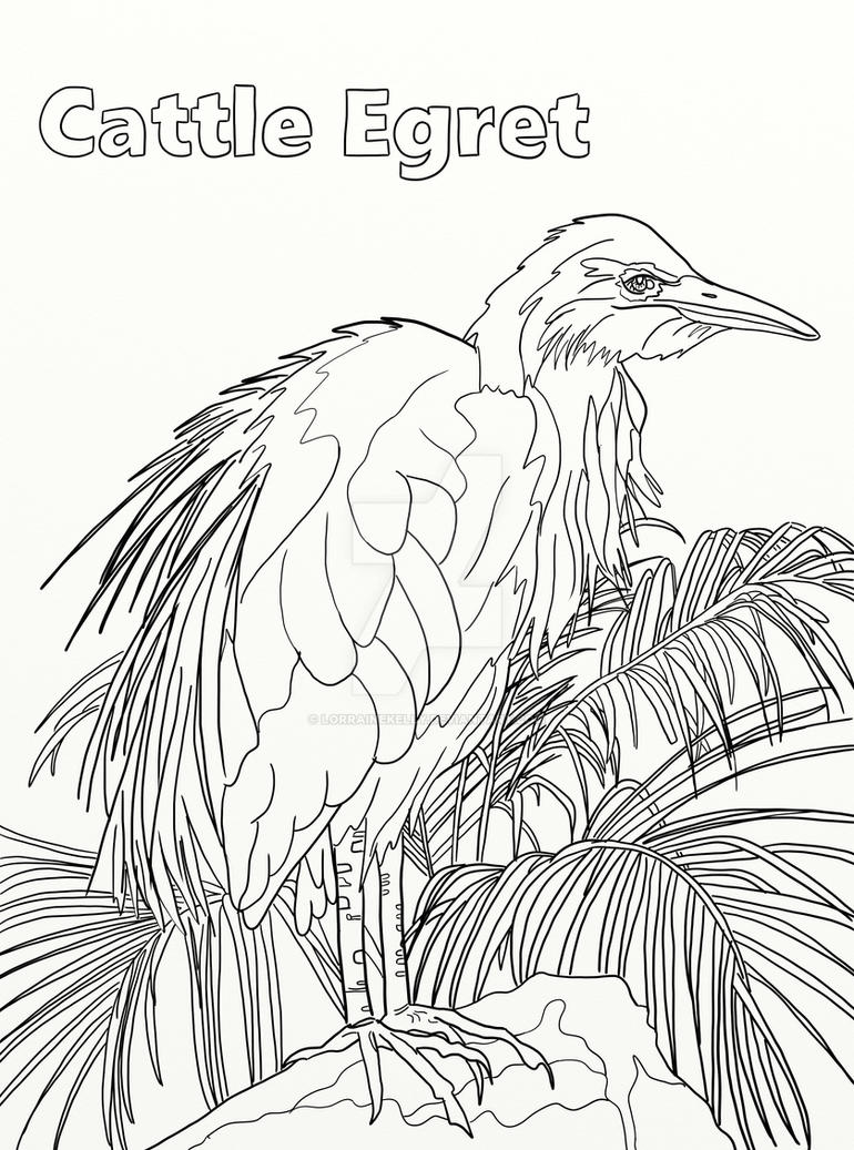 Page 18 Of Australian Birds Adult Coloring Book By LorraineKelly