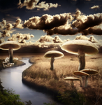 Mushroom Valley