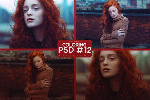 PSD_12 [Coloring]