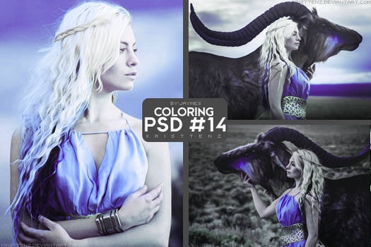 PSD_14 [Coloring]