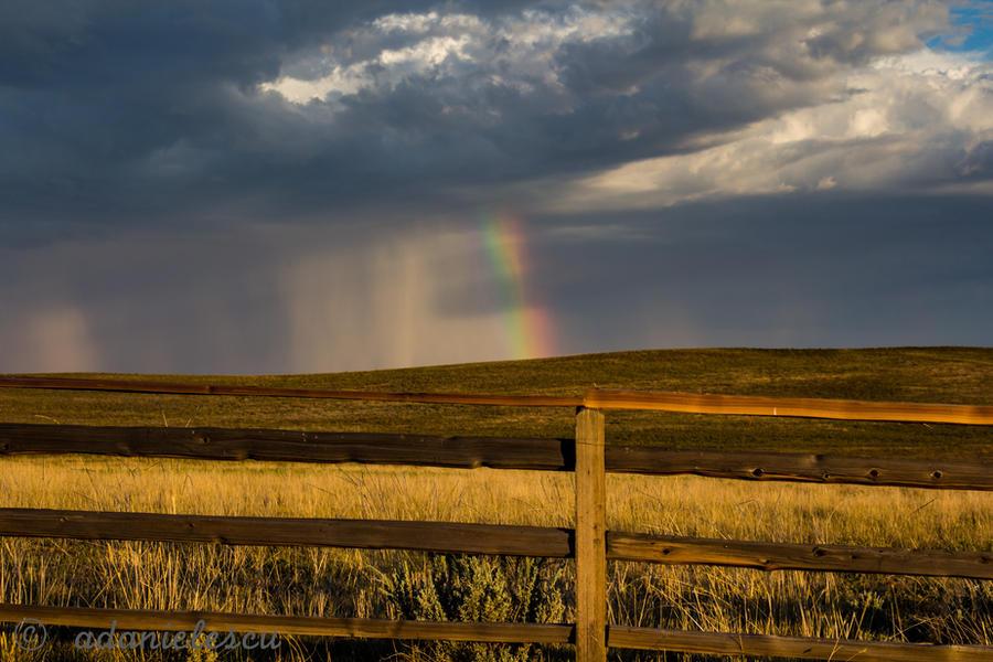 Rainbow by adanielescu