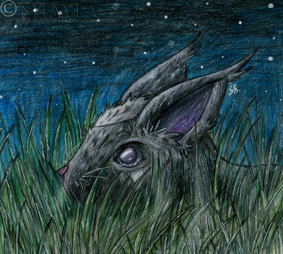 Hunter by Shaymin-Lea