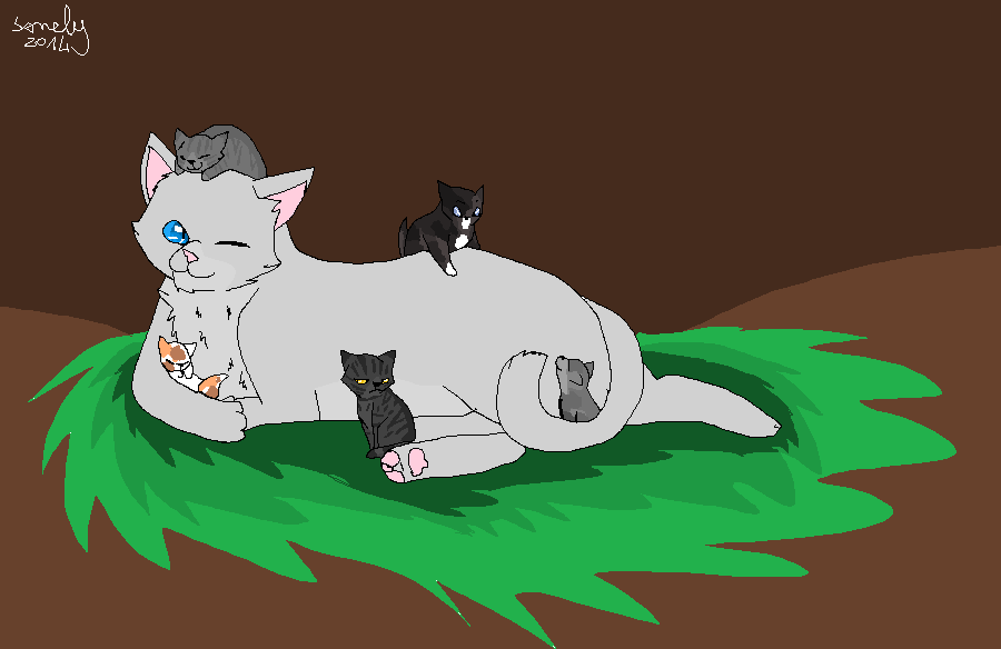 Warrior Cats Willowpelt