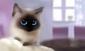 Cute kitten - 1 by Nneila