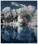 IR Lake Shore