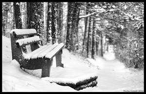 Winter Bench by hquer