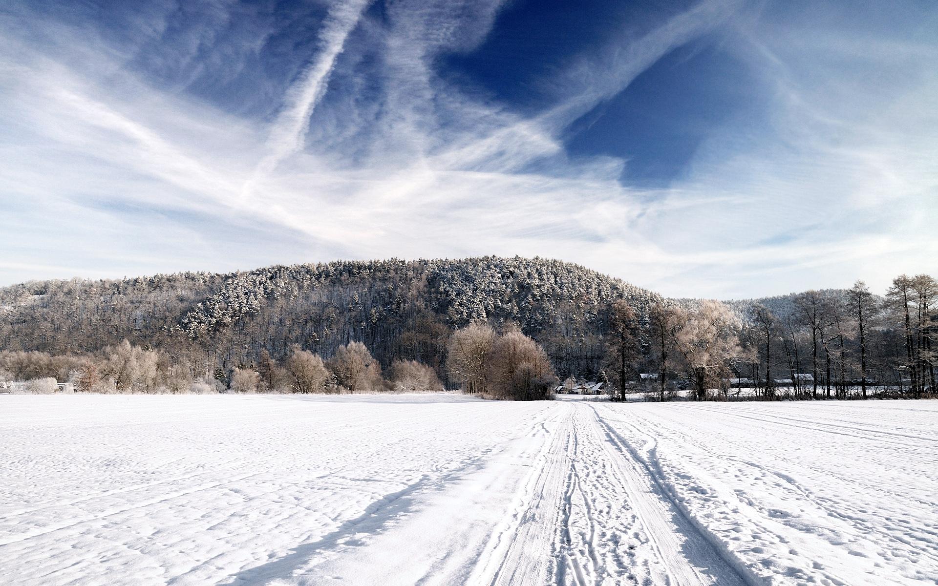 http://fc08.deviantart.net/fs70/f/2010/045/5/6/Winter_Landscape_by_hquer.jpg
