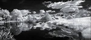 IR Pond by hquer