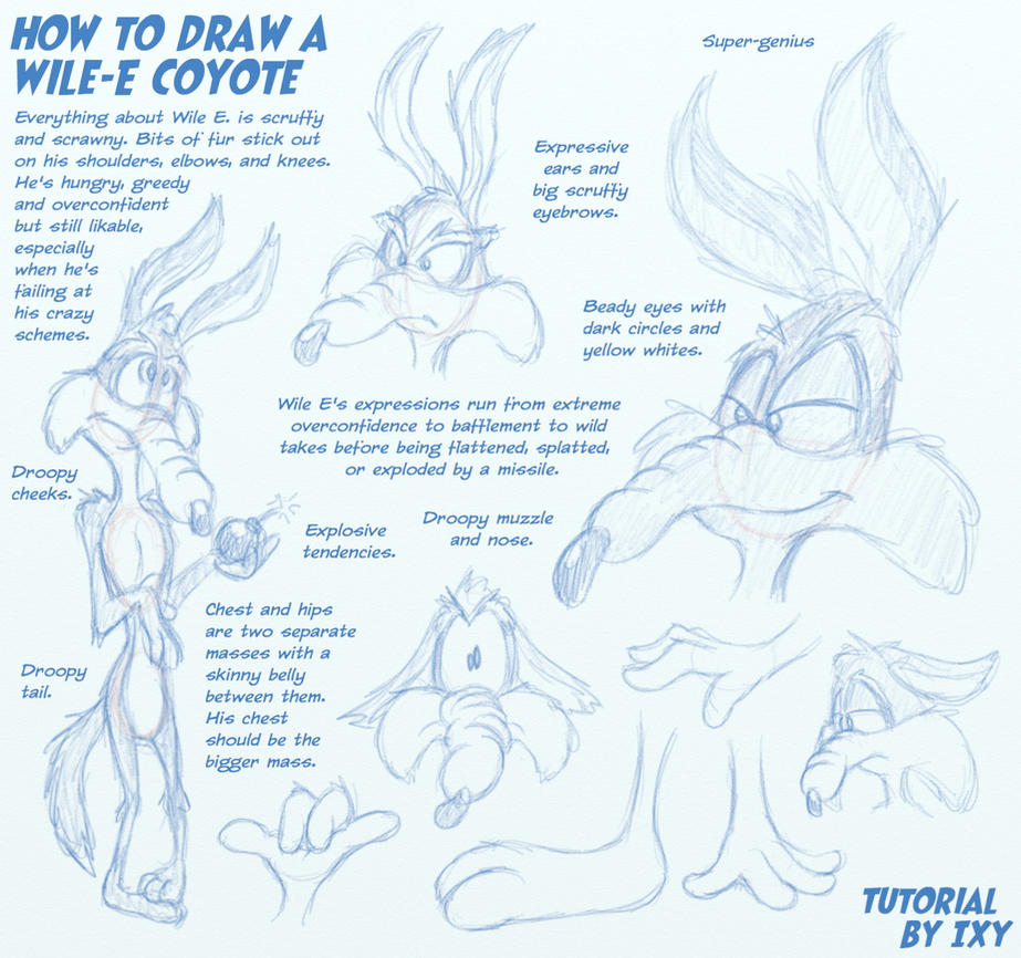 how to draw wile e coyote by ixbalam on deviantart