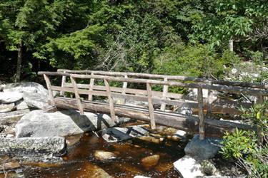 New Blueberry Run Bridge by ixbalam