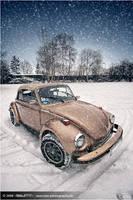 Winter Wonderland by TobiasRauschenCom