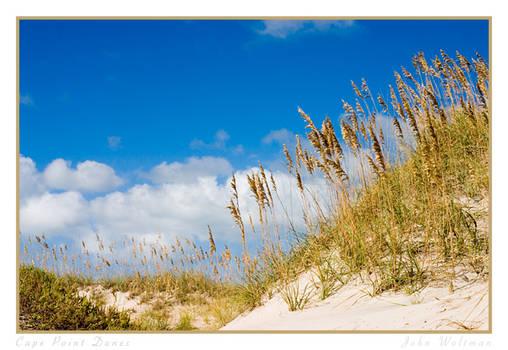 Cape Point Dunes