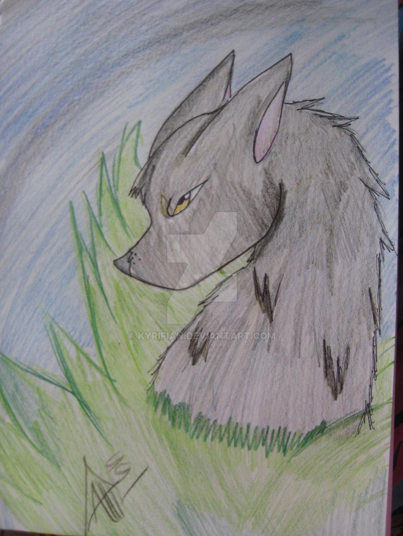 Wolf! by Kyrifian