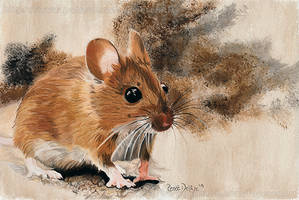 Mouse - Soft Pastel Portrait