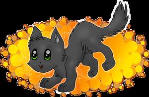 Cat in Black o_O by Catka777