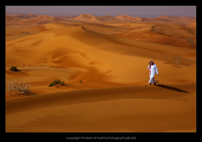 A Deserts Walk To Remember