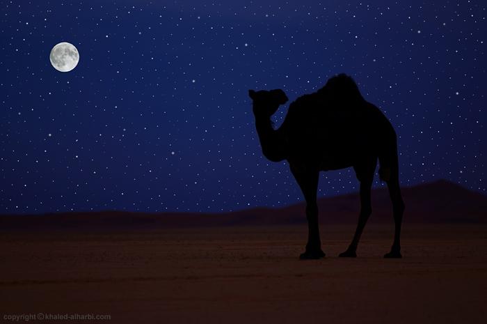 Arabian Nights by itash on DeviantArt