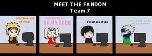 Meet The Fandom: Team Seven.