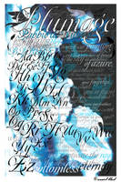 Plumage Typeface Poster by sunfairyx